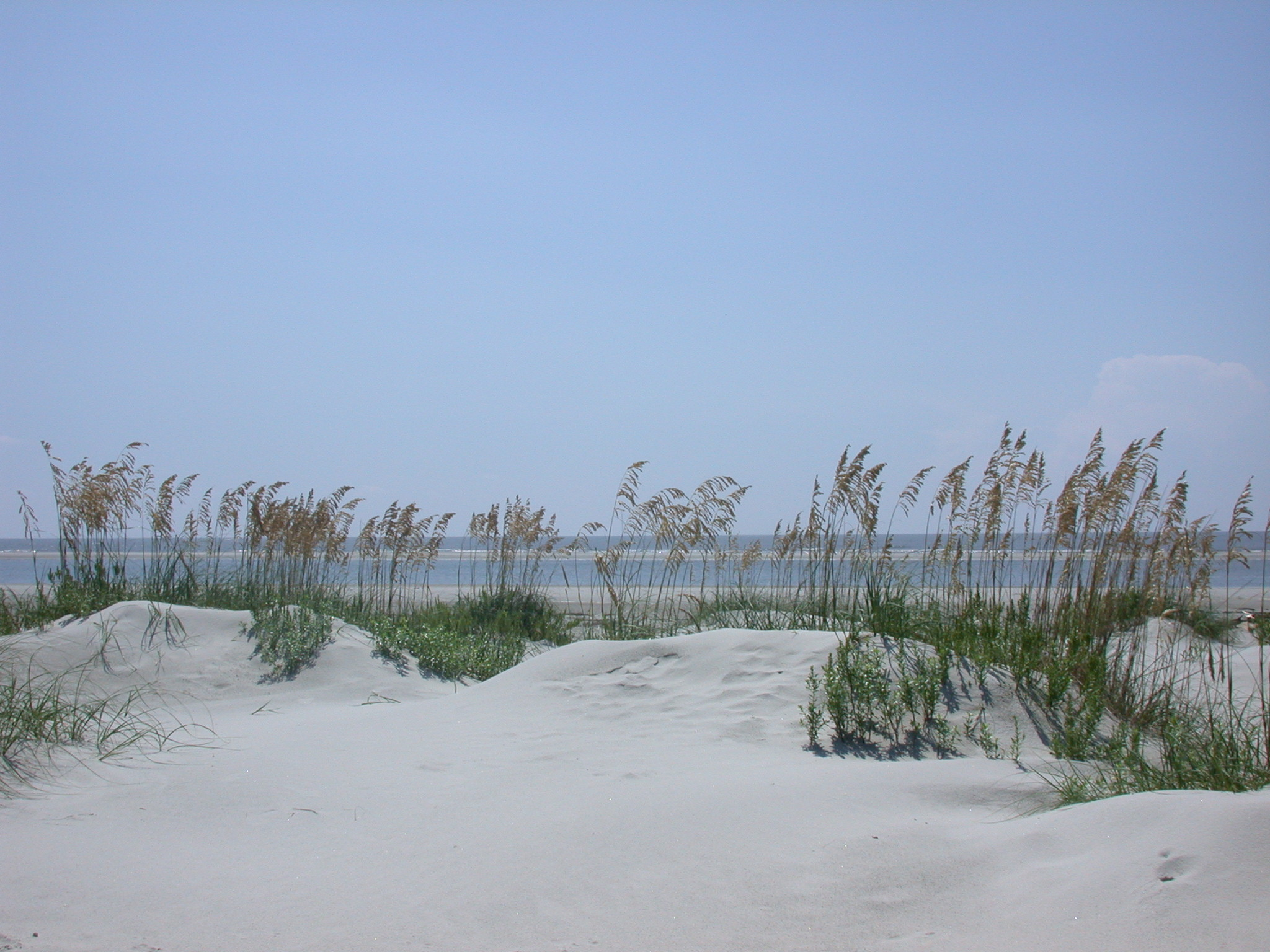 Fripp Island Real Estate Seaside Real Estate